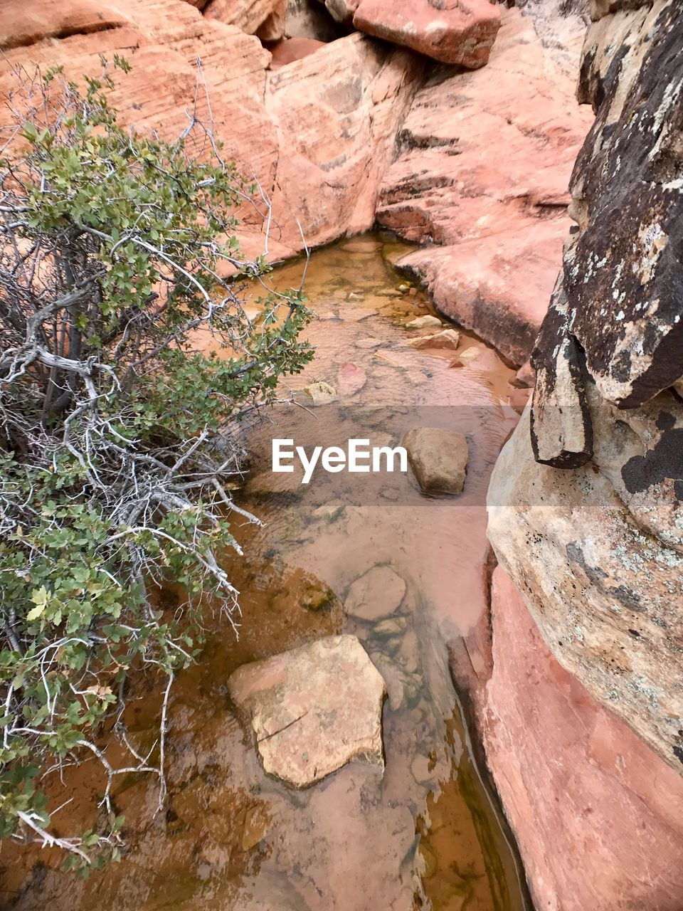 rock - object, rock formation, no people, rock, nature, outdoors, day, tranquility, water, beauty in nature
