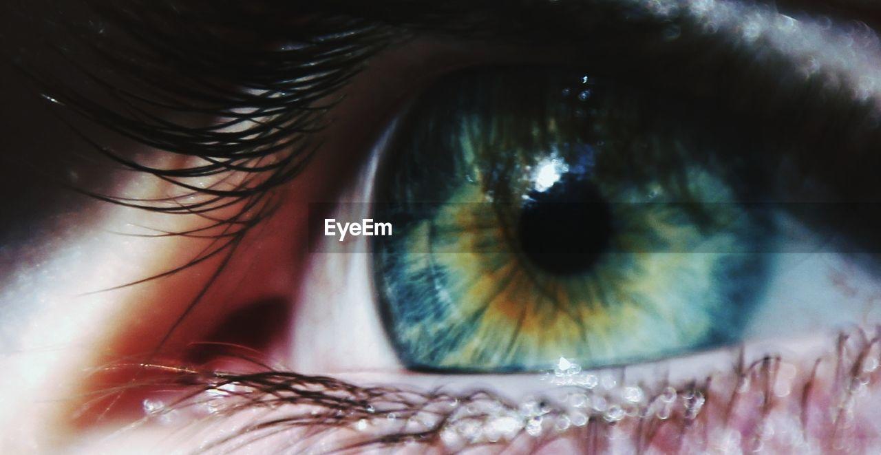 human eye, eyelash, real people, one person, sensory perception, eyesight, human body part, eyeball, close-up, iris - eye, women, outdoors, day, people