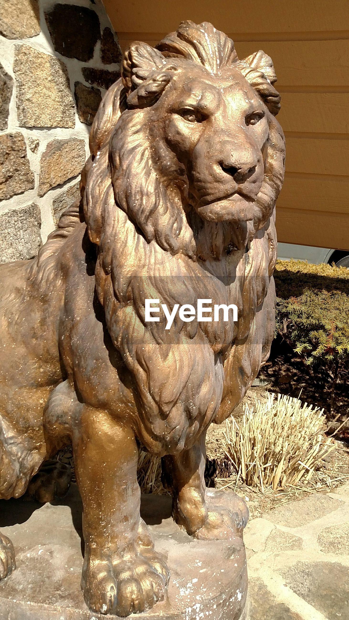 Close-up of a lion representation