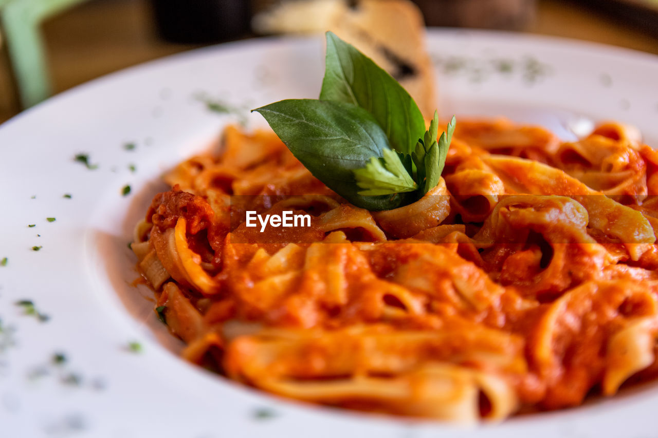 food, food and drink, plate, italian food, ready-to-eat, pasta, freshness, close-up, basil, serving size, herb, indoors, leaf, plant part, no people, indulgence, garnish, still life, meal, crockery, spaghetti, temptation, snack