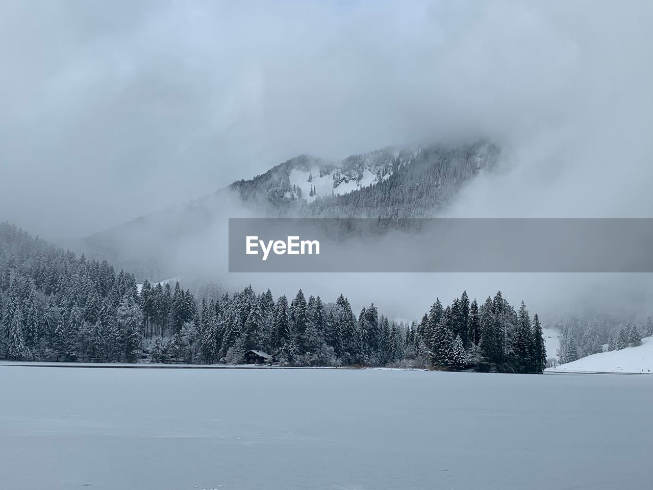 cold temperature, snow, winter, tree, scenics - nature, beauty in nature, mountain, sky, tranquil scene, plant, environment, non-urban scene, nature, tranquility, land, day, covering, landscape, cloud - sky, no people, outdoors, snowcapped mountain, power in nature, mountain peak