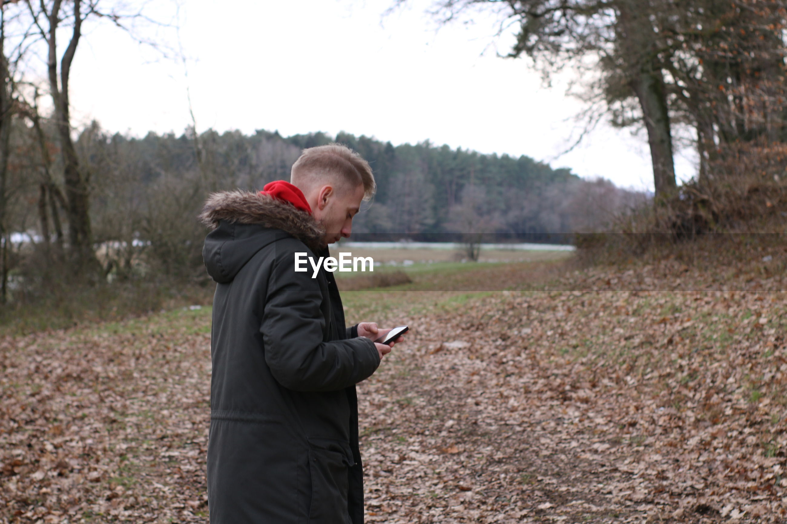 Side view of man using mobile phone while standing in forest against sky