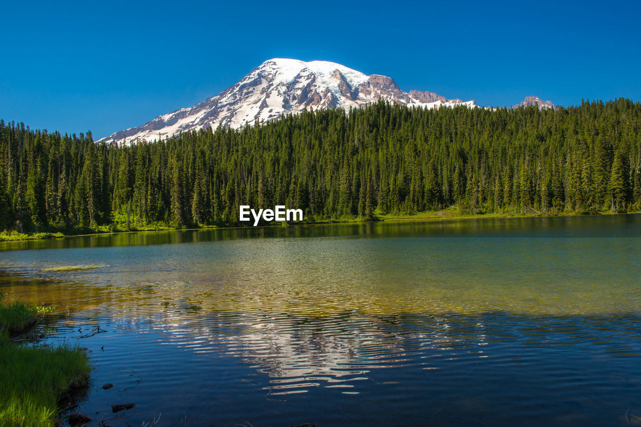 SCENIC VIEW OF LAKE AGAINST TREES AND MOUNTAIN AGAINST SKY