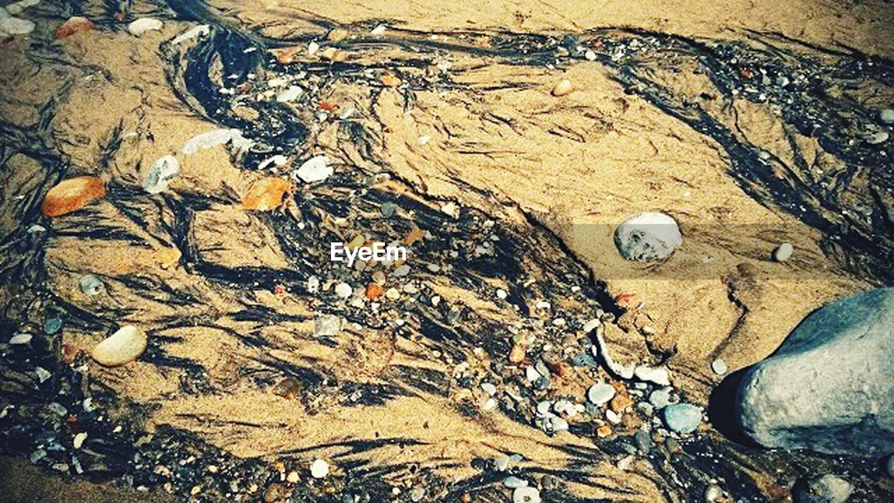 high angle view, day, no people, outdoors, nature, beach, close-up, oil spill