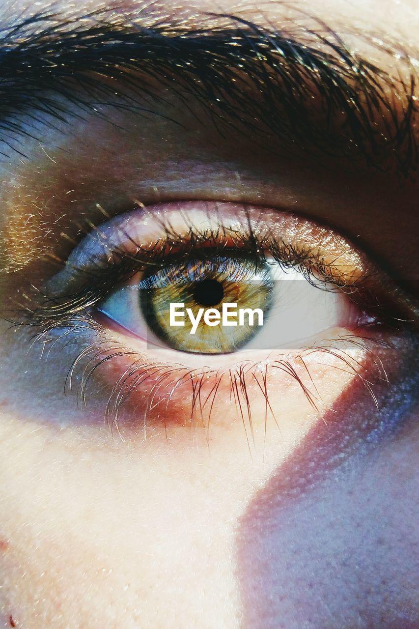 human eye, eyelash, looking at camera, eyeball, sensory perception, one person, eyesight, real people, portrait, human body part, eyelid, iris - eye, close-up, iris, eyebrow, outdoors, day, people