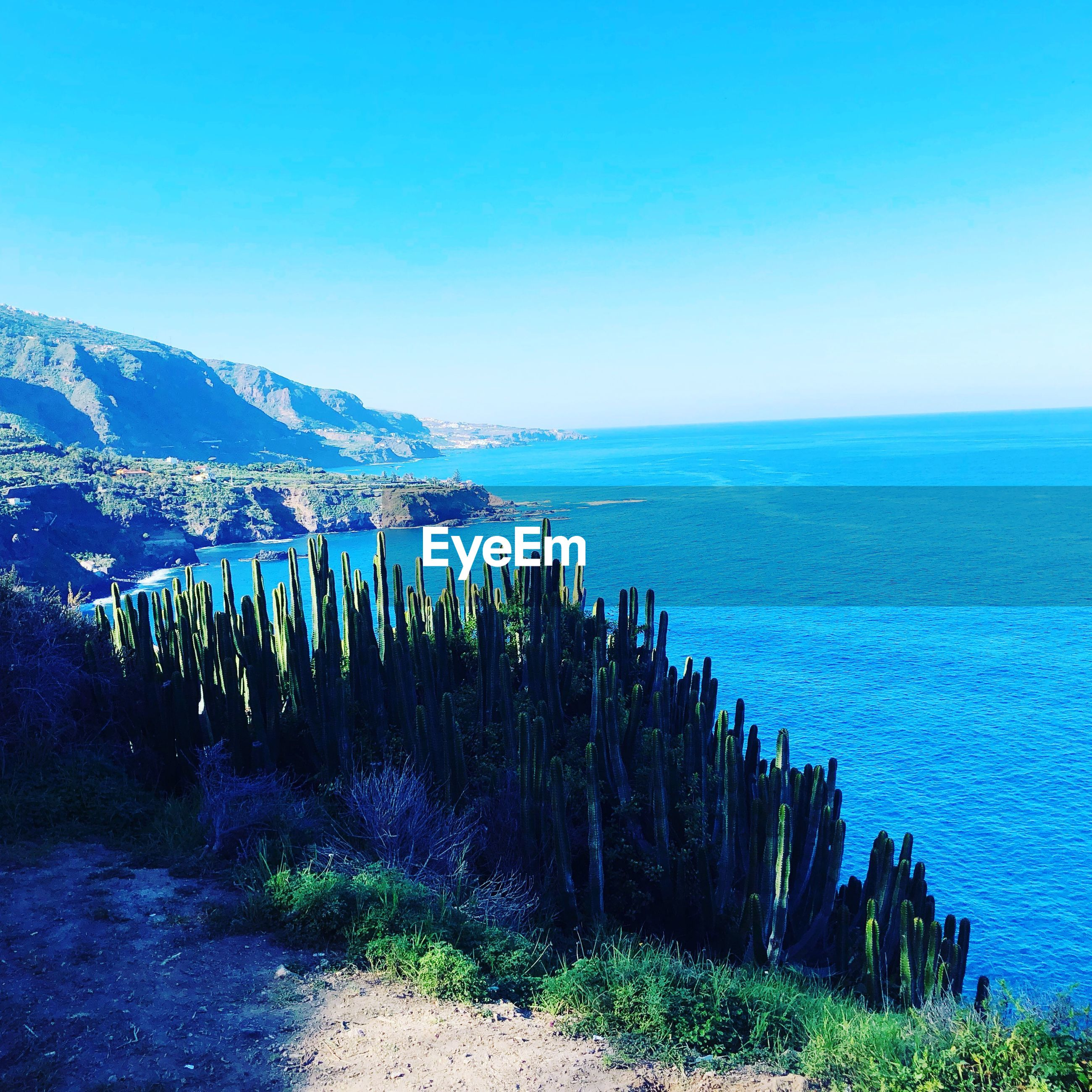 PANORAMIC SHOT OF SEA AGAINST CLEAR SKY