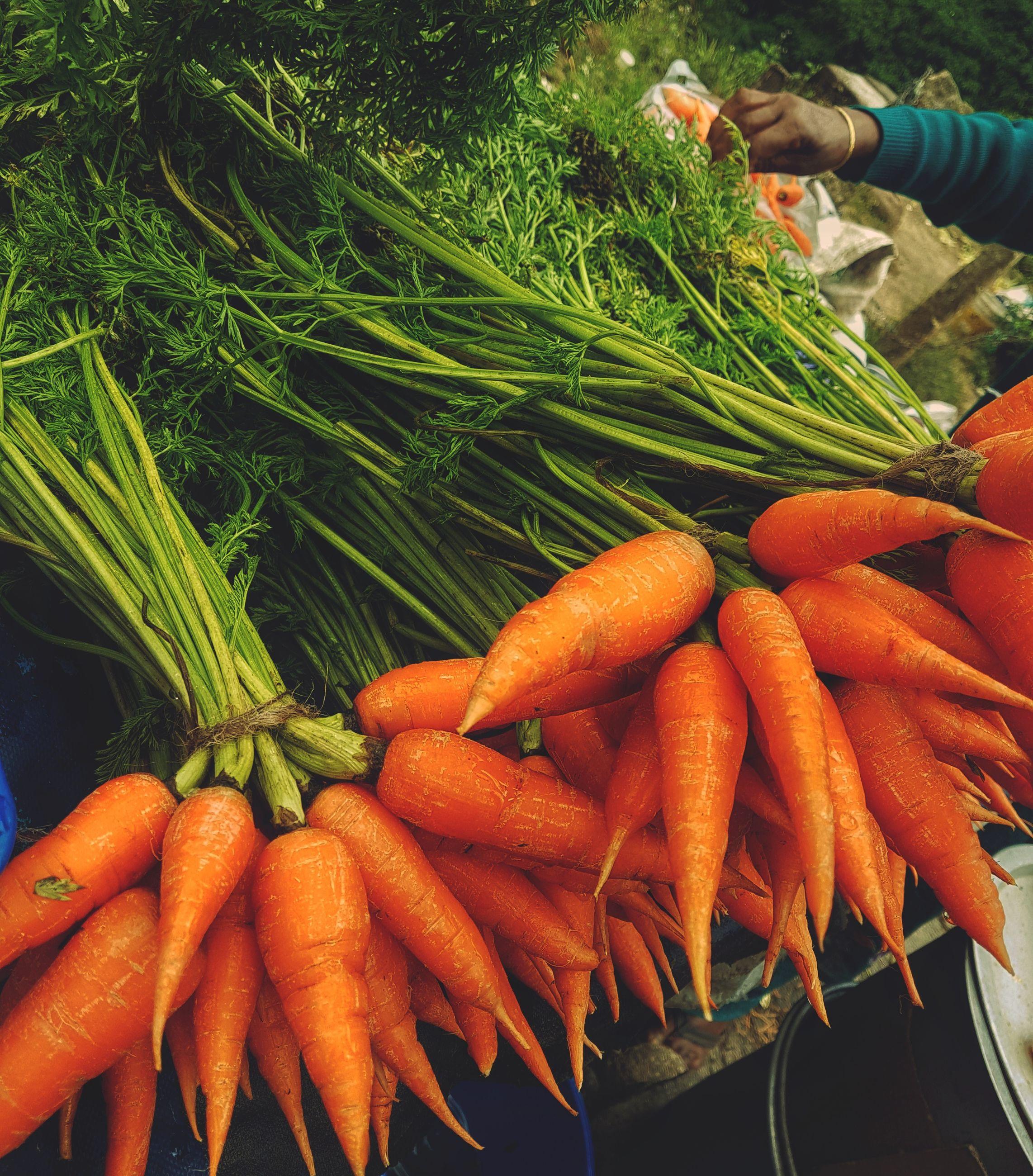 Close-up of carrots at market stall
