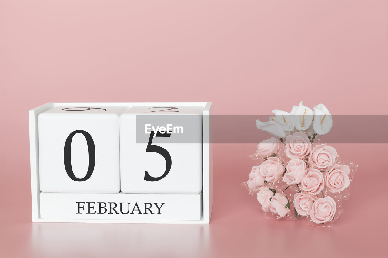 indoors, flowering plant, close-up, flower, no people, communication, text, studio shot, plant, white color, colored background, western script, nature, beauty in nature, still life, pink color, wall - building feature, number, freshness, copy space, flower head, flower arrangement