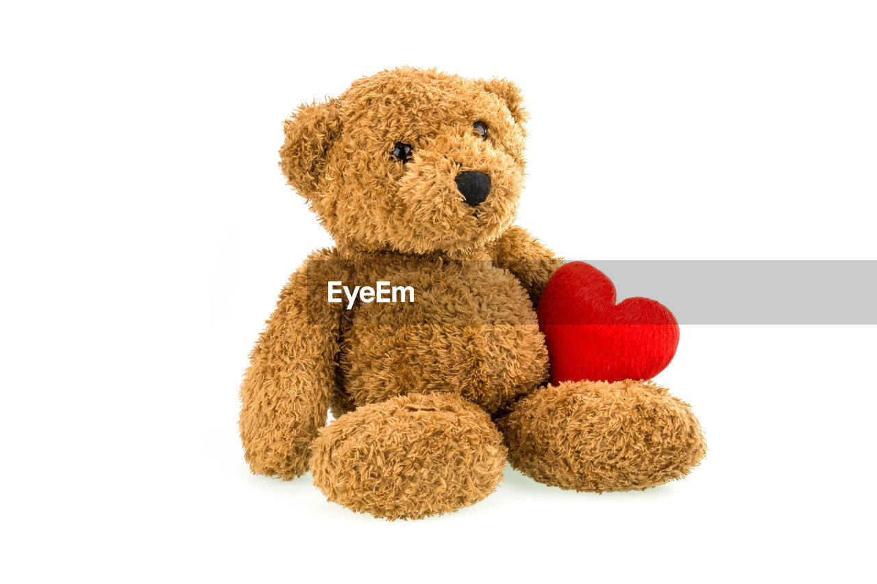teddy bear, white background, cut out, toy, stuffed toy, healthcare and medicine, illness, childhood, cute, no people, close-up, physical impairment, mammal