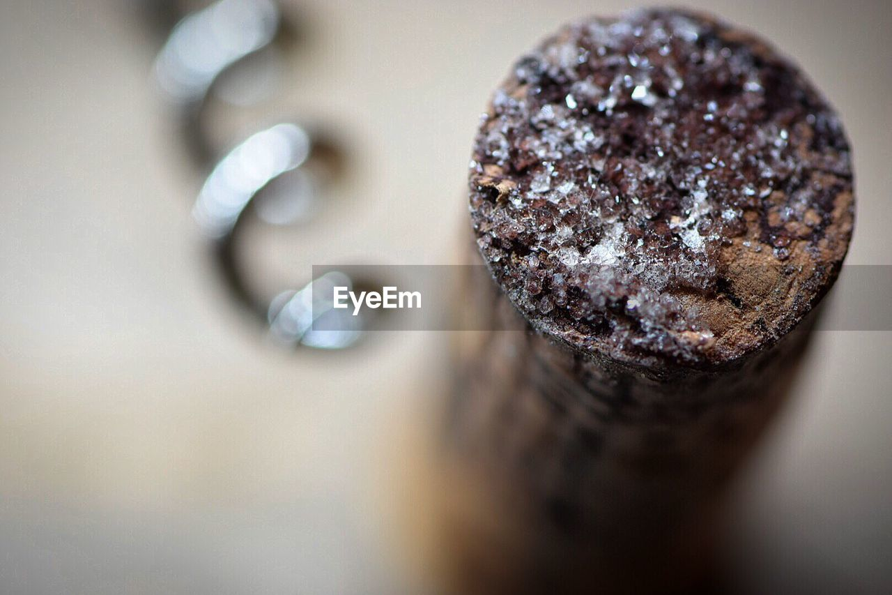 close-up, selective focus, sweet food, food and drink, food, indoors, still life, no people, indulgence, sweet, temptation, dessert, chocolate, freshness, ready-to-eat, baked, high angle view, focus on foreground, table, unhealthy eating, snack, chocolate cake