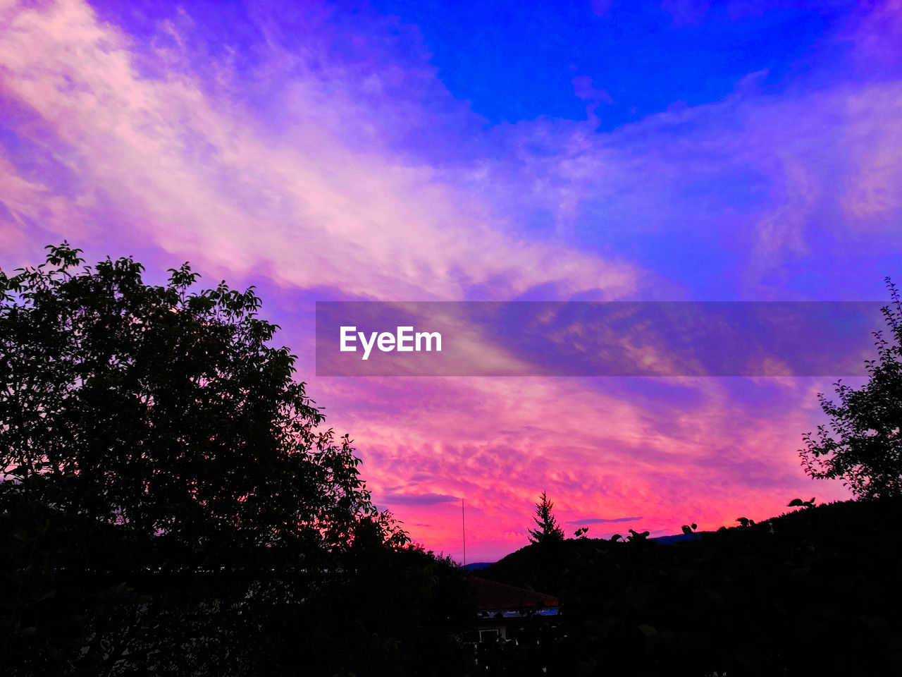 sky, tree, silhouette, cloud - sky, plant, sunset, beauty in nature, scenics - nature, tranquility, nature, tranquil scene, growth, no people, low angle view, pink color, outdoors, idyllic, dramatic sky, purple, dusk