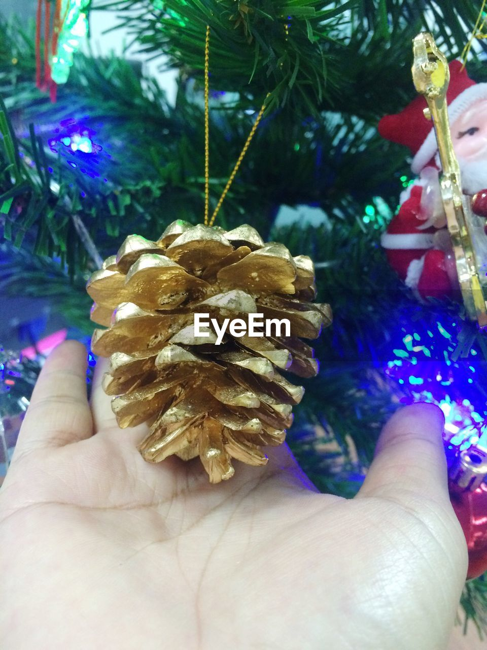 human hand, christmas, holding, human body part, one person, real people, personal perspective, christmas tree, christmas decoration, human finger, celebration, indoors, unrecognizable person, focus on foreground, close-up, christmas ornament, leisure activity, lifestyles, day, people