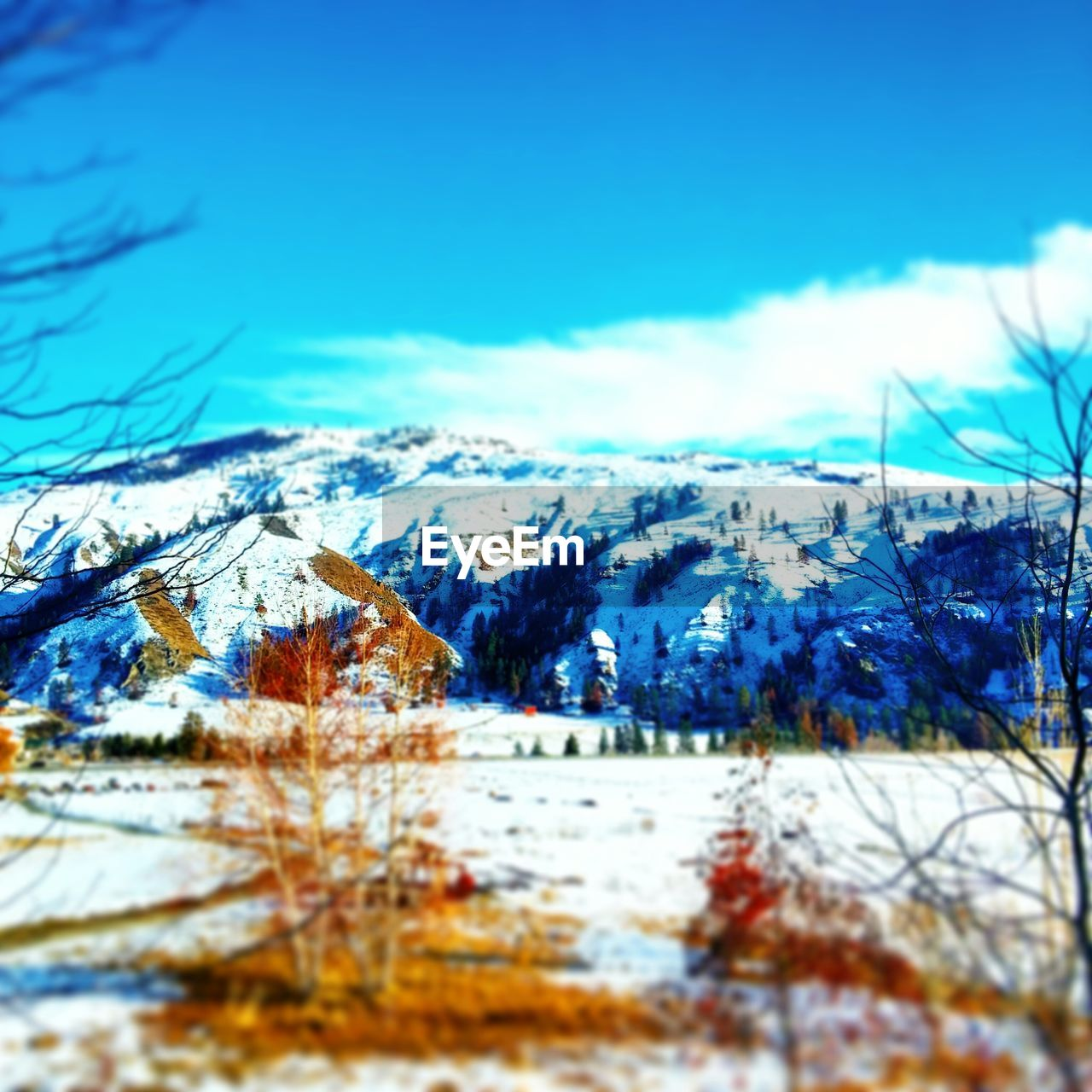 snow, winter, cold temperature, nature, beauty in nature, sky, blue, scenics, no people, tree, outdoors, tranquil scene, mountain, day, tranquility, landscape, travel destinations, building exterior, bare tree, architecture, tilt-shift