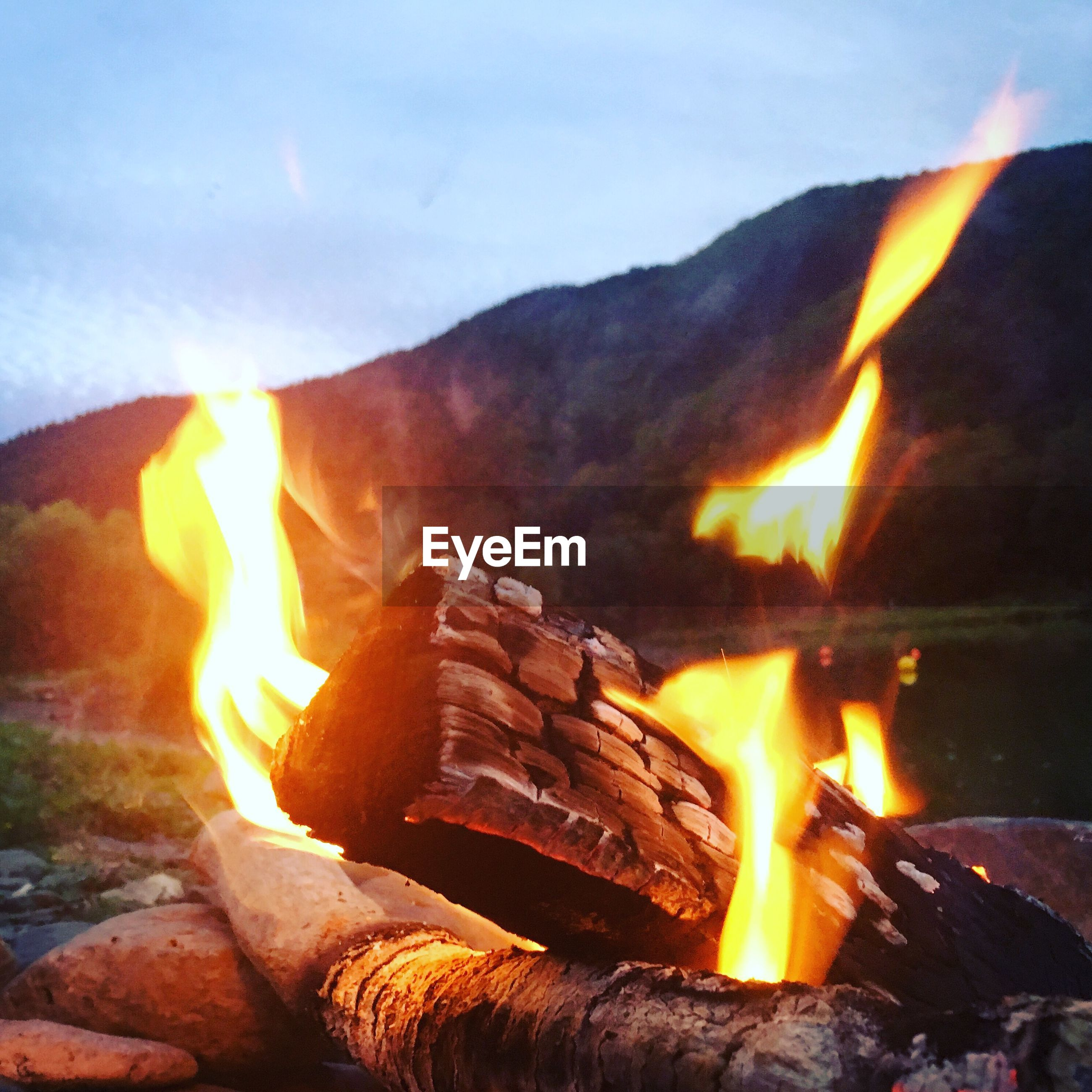 burning, fire, flame, heat - temperature, fire - natural phenomenon, wood - material, orange color, nature, firewood, wood, log, glowing, bonfire, close-up, no people, environment, motion, outdoors, night, sky, campfire