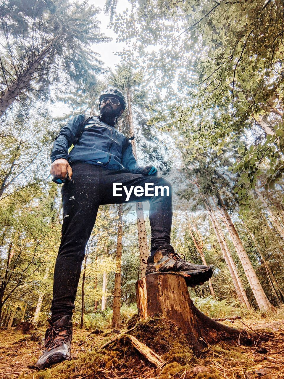 LOW ANGLE VIEW OF MAN ON TREE TRUNK