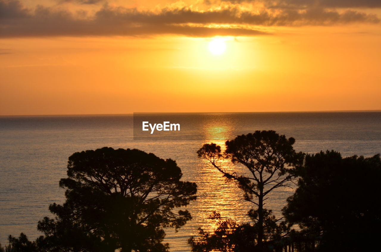 sky, sunset, scenics - nature, sea, water, horizon over water, beauty in nature, horizon, tranquil scene, tranquility, orange color, sun, plant, nature, idyllic, tree, silhouette, no people, sunlight, outdoors