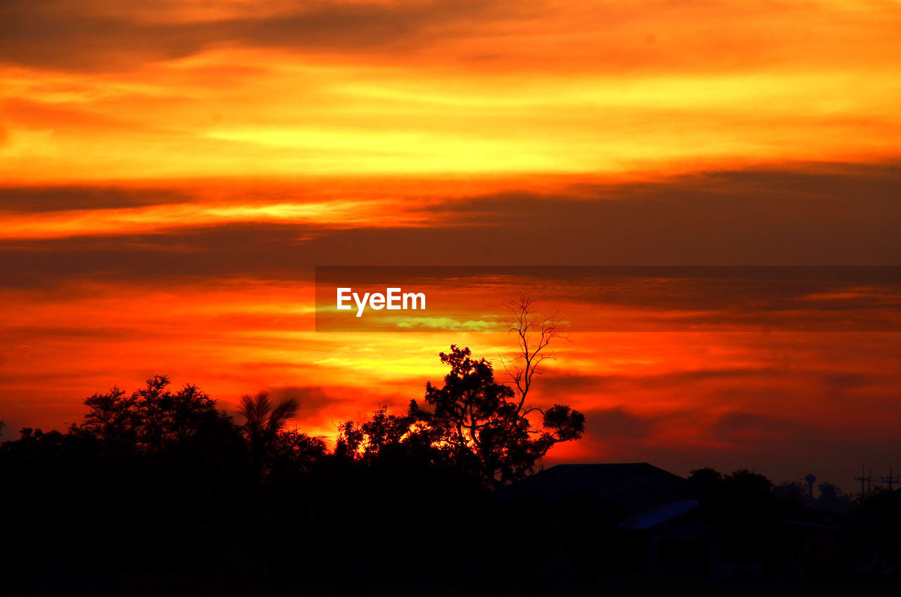 sunset, sky, orange color, silhouette, beauty in nature, cloud - sky, scenics - nature, tree, plant, tranquil scene, tranquility, nature, idyllic, no people, non-urban scene, dramatic sky, growth, outdoors, majestic, awe, romantic sky