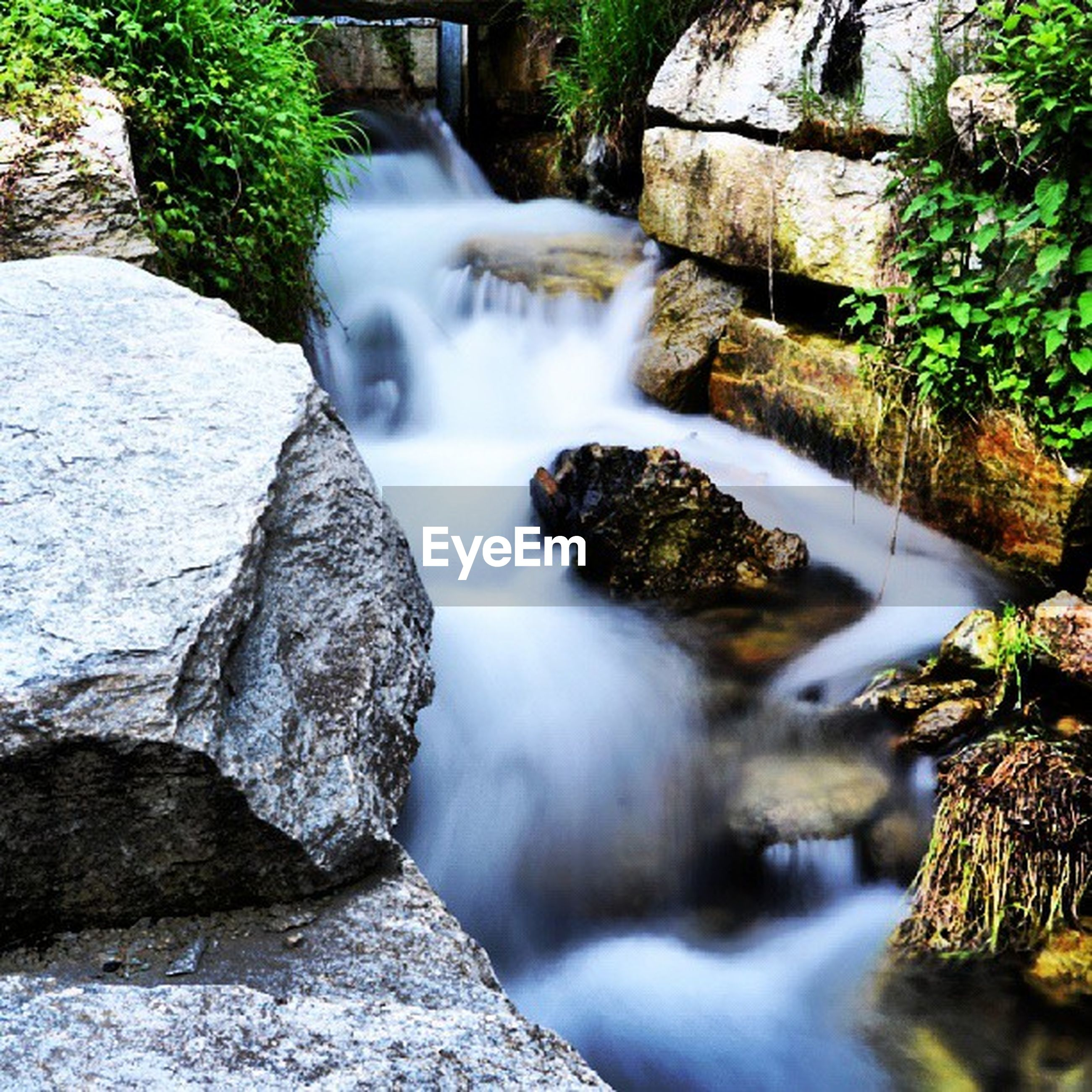 water, waterfall, flowing water, motion, flowing, long exposure, rock - object, stream, nature, beauty in nature, forest, blurred motion, rock, rock formation, scenics, river, tree, outdoors, day, plant