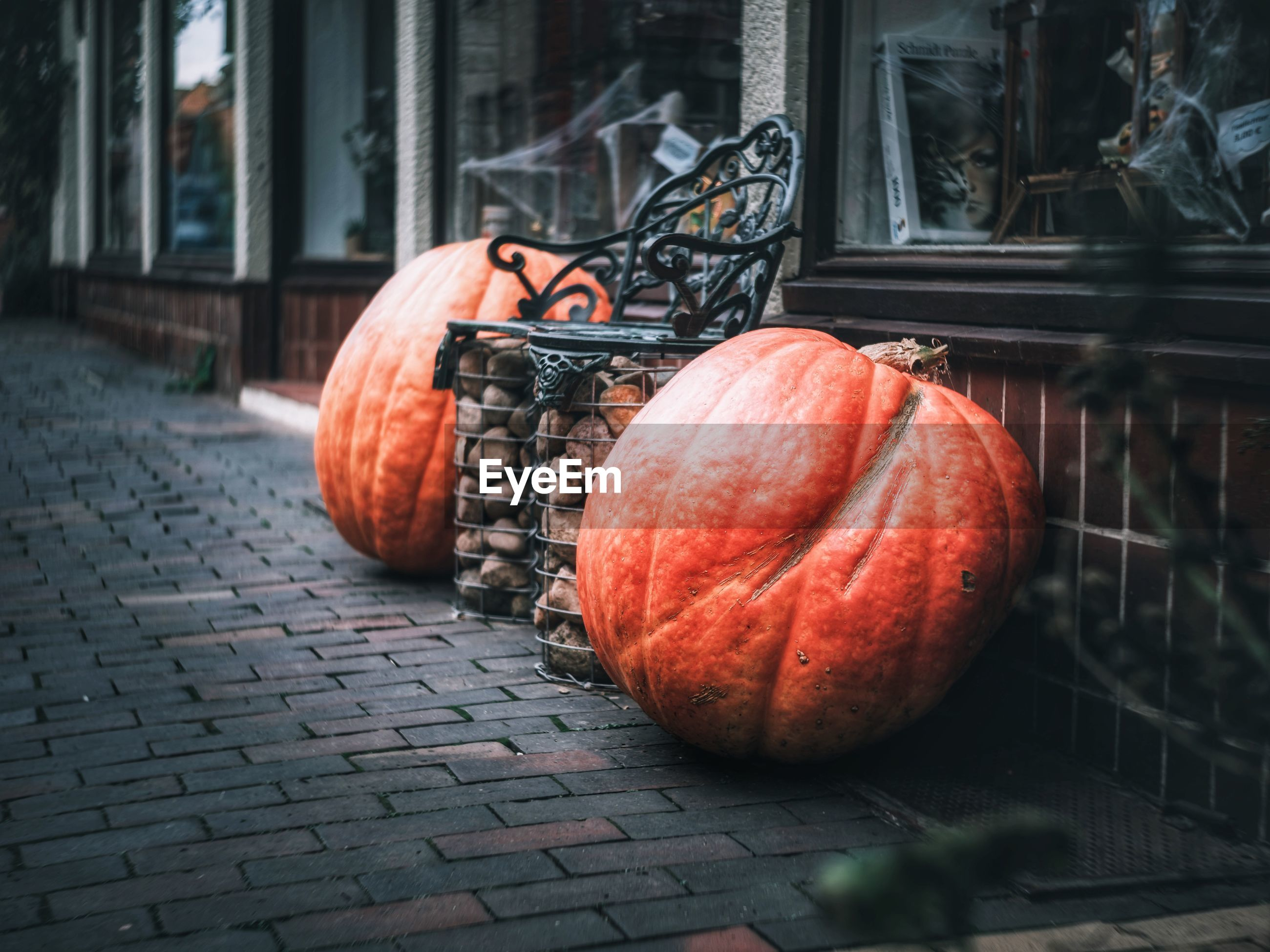 Two pumpkins framing a bench