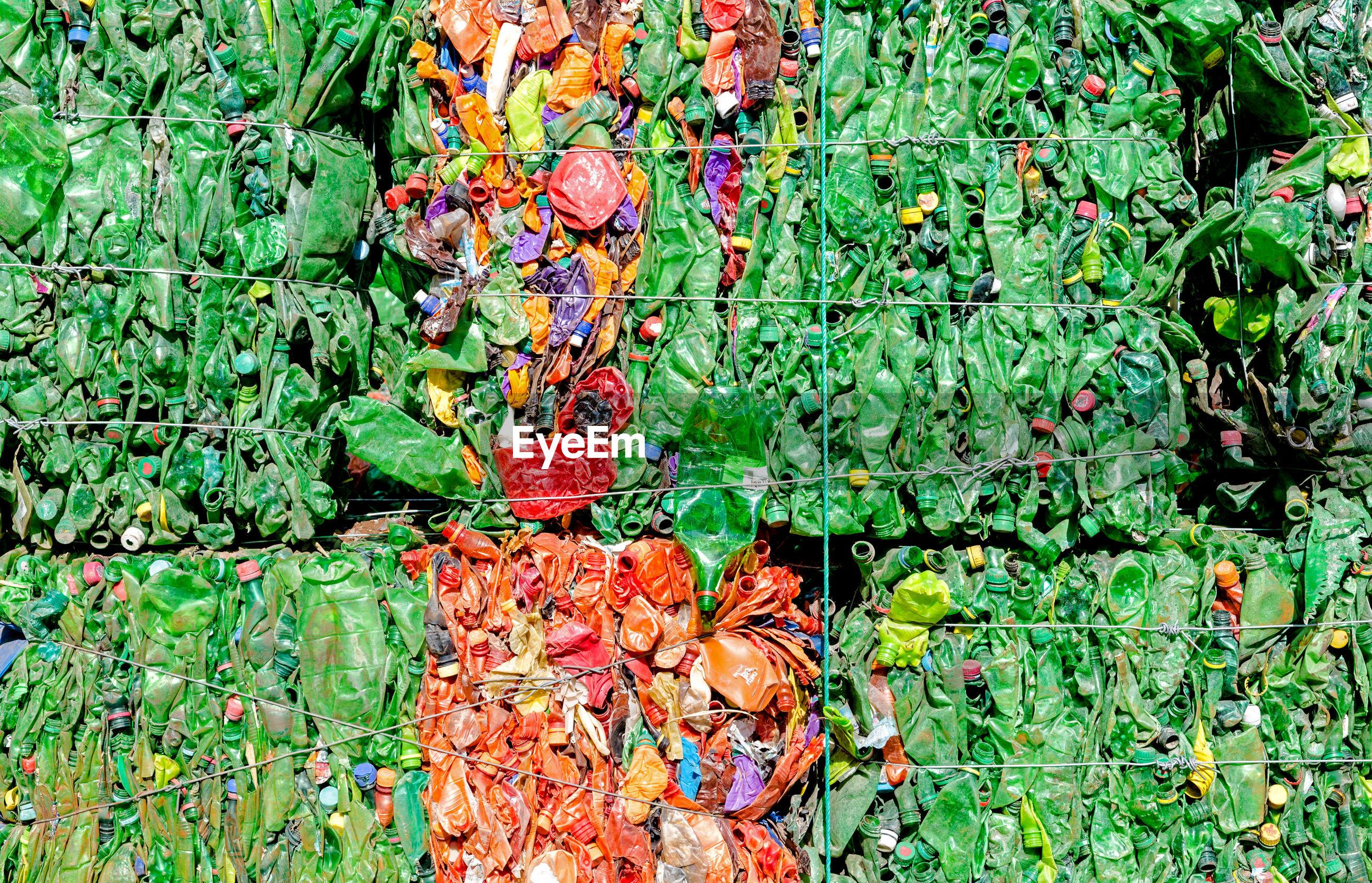 FULL FRAME SHOT OF MULTI COLORED FLOWERING PLANTS