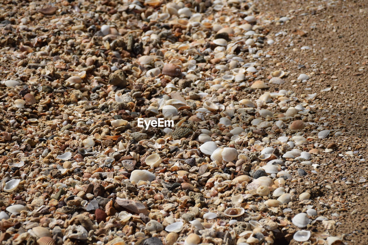 pebble, beach, backgrounds, sand, high angle view, no people, full frame, nature, day, close-up, outdoors, pebble beach