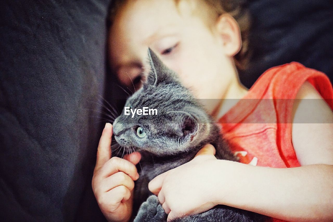 Child holding kitten at home