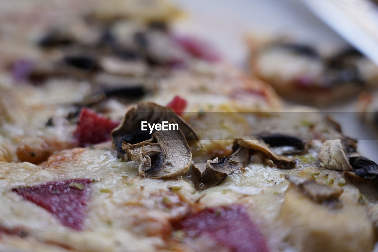 CLOSE-UP OF PIZZA ON LEAF