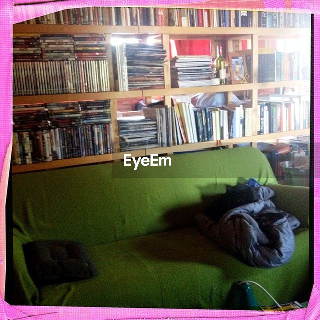 bookshelf, book, indoors, shelf, library, domestic animals, no people, animal themes, mammal, day
