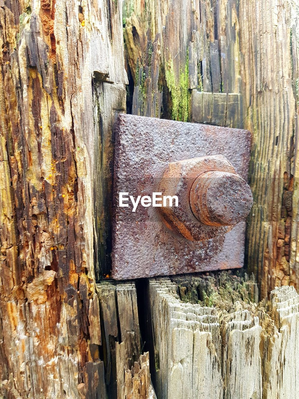 metal, rusty, wood - material, day, no people, outdoors, weathered, nut - fastener, textured, close-up