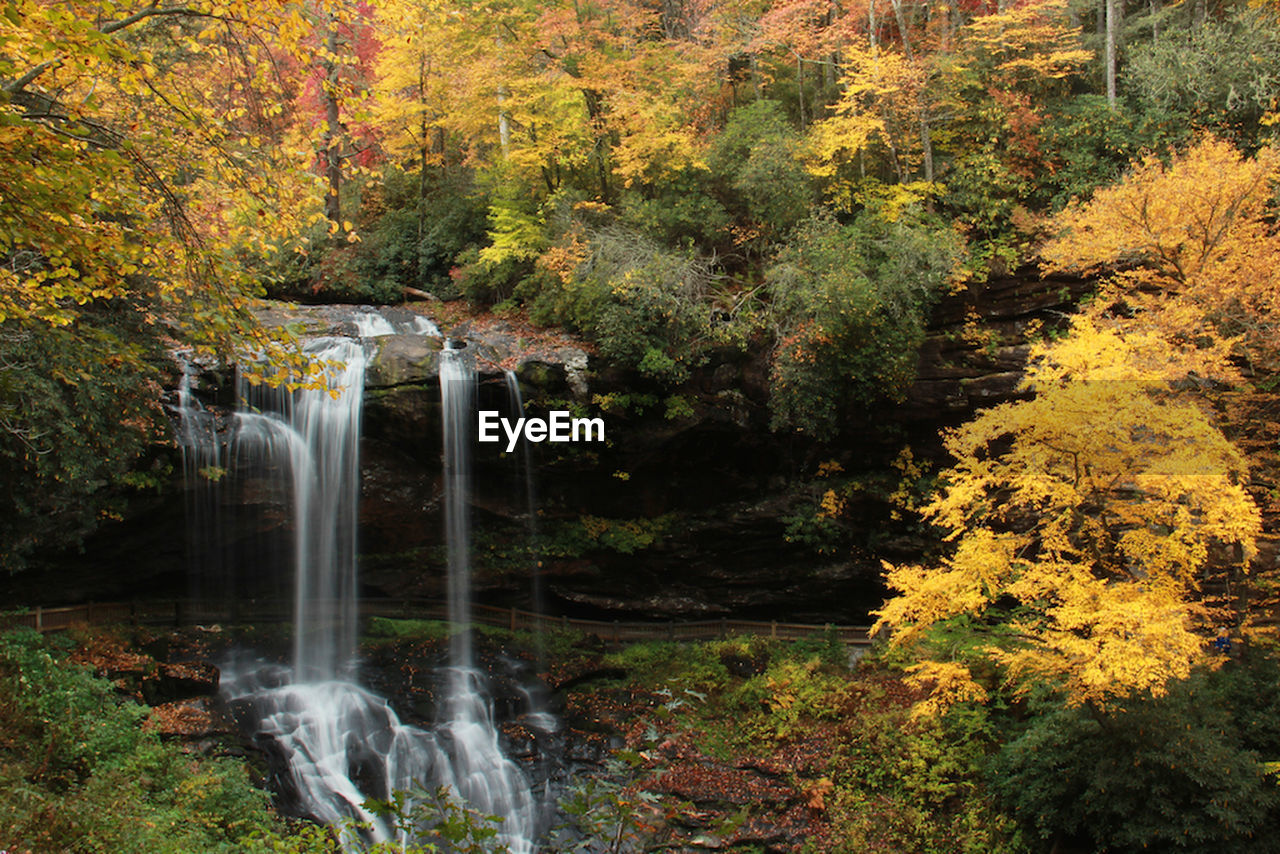 autumn, tree, nature, waterfall, beauty in nature, forest, leaf, scenics, change, no people, tranquil scene, outdoors, motion, water, tranquility, long exposure, plant, day