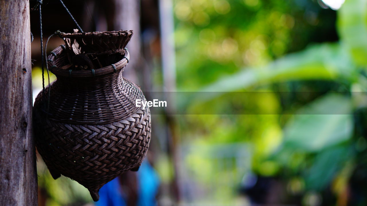 focus on foreground, no people, close-up, day, hanging, art and craft, nature, outdoors, container, plant, brown, pattern, leaf, creativity, wood - material, plant part, lantern, craft, black color, electric lamp