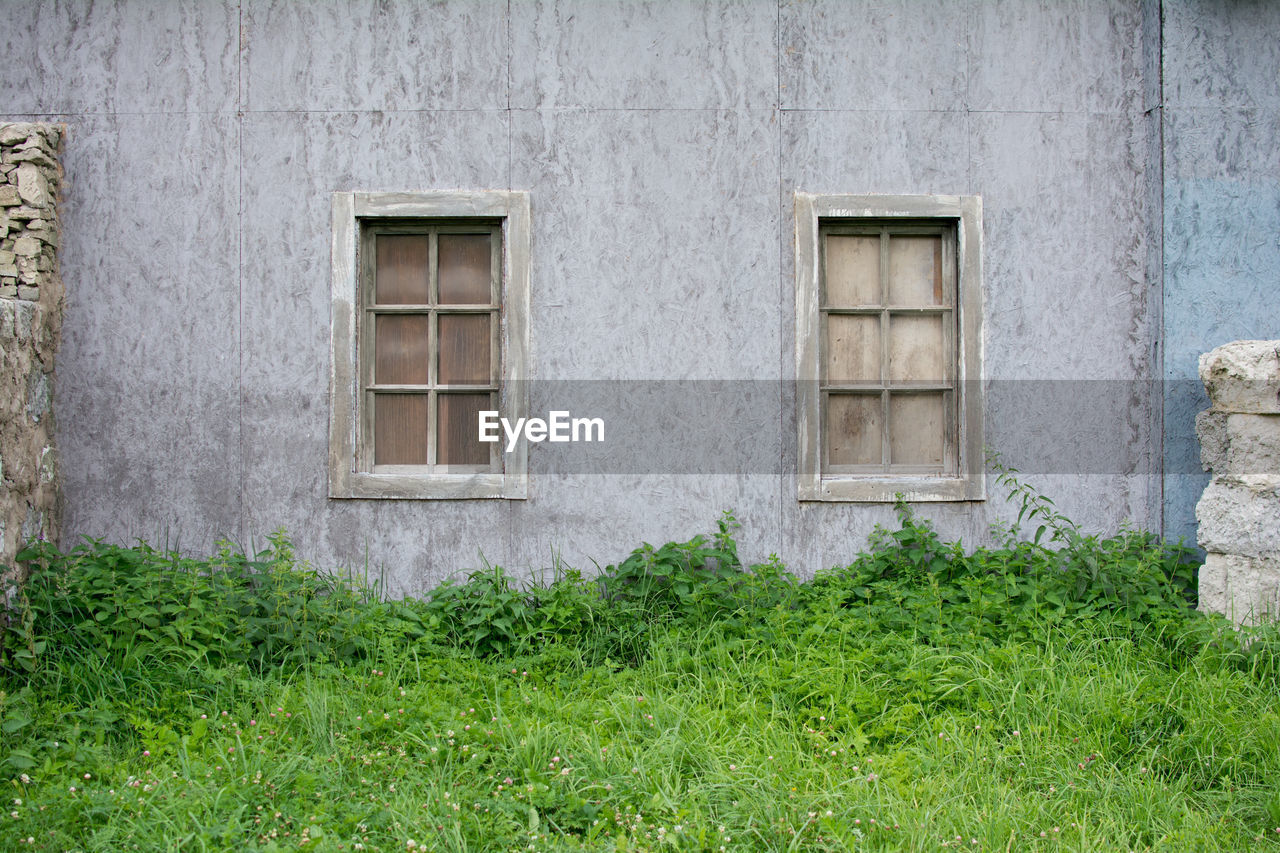 architecture, building exterior, built structure, window, green color, day, no people, outdoors, plant, grass, nature