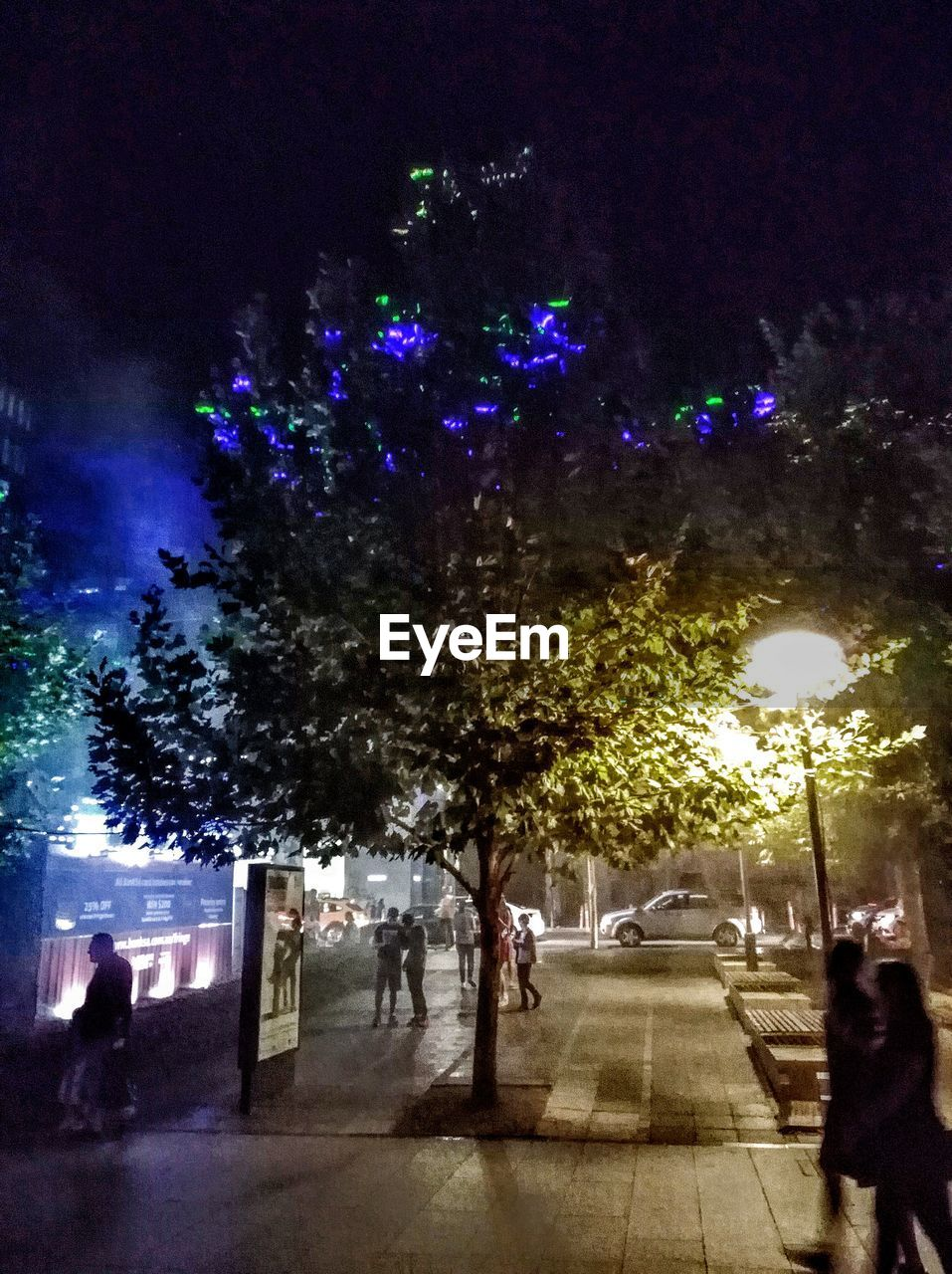 night, real people, large group of people, illuminated, men, women, lifestyles, leisure activity, tree, city life, celebration, group of people, outdoors, city, crowd, nature, sky, people, adult