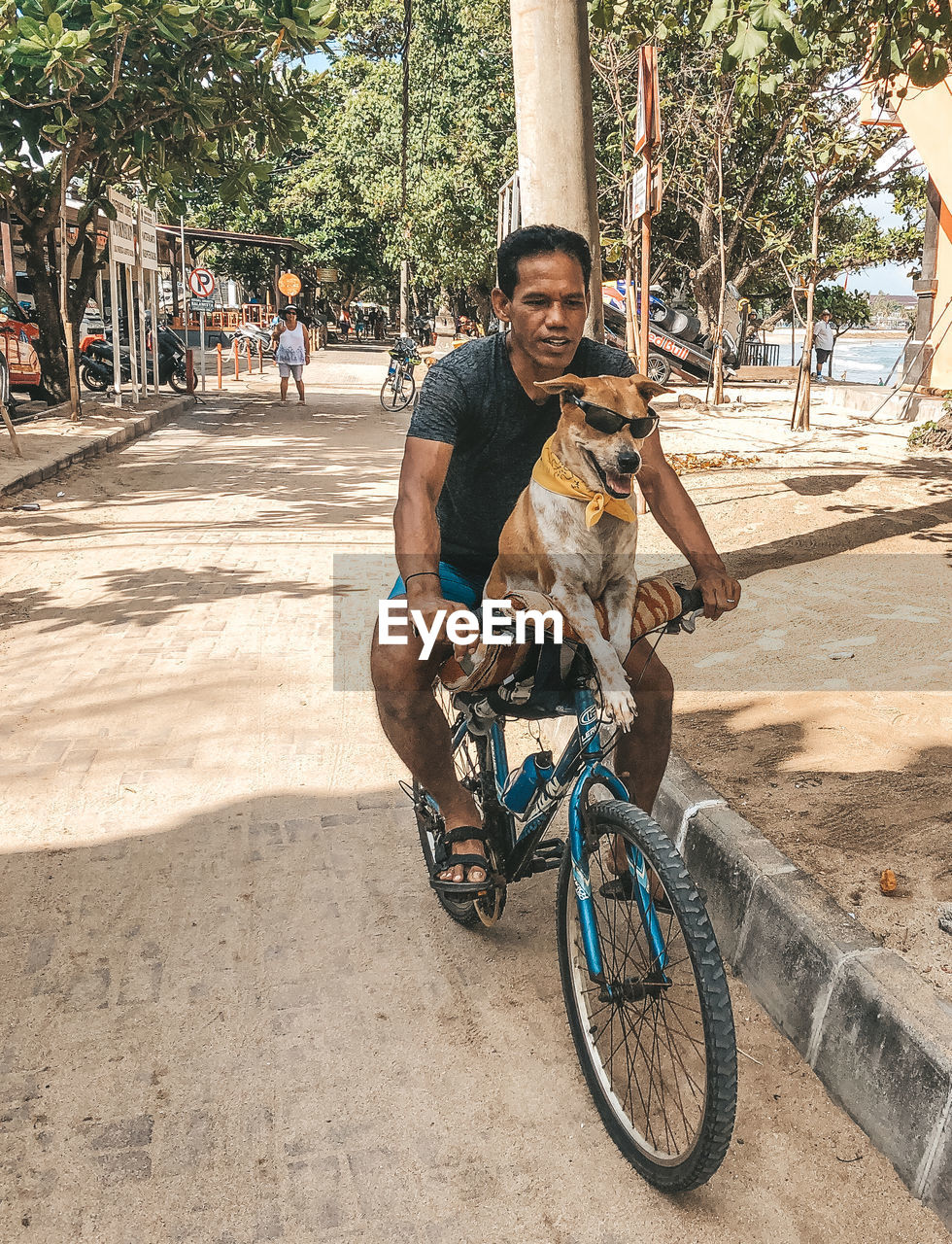 real people, tree, incidental people, transportation, one person, full length, city, lifestyles, land vehicle, men, ride, plant, riding, sunlight, casual clothing, bicycle, mode of transportation, leisure activity, street, outdoors