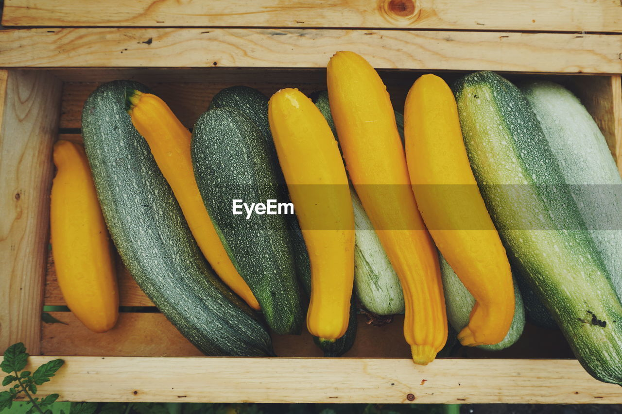 High angle view of wet yellow and green squash in wooden basket for sale at market