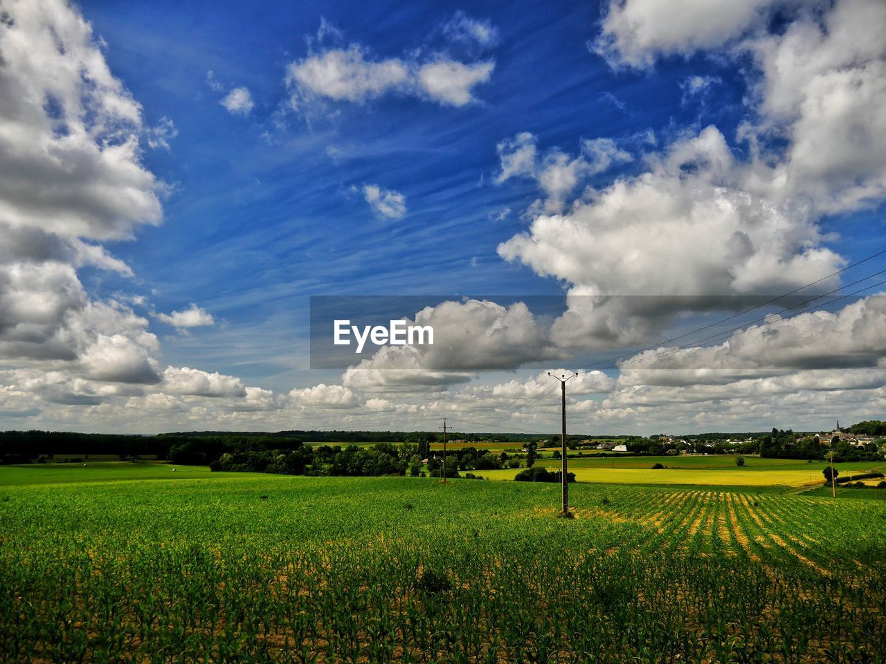 cloud - sky, sky, landscape, environment, land, field, scenics - nature, tranquility, beauty in nature, tranquil scene, plant, rural scene, agriculture, nature, green color, day, grass, no people, growth, idyllic, outdoors