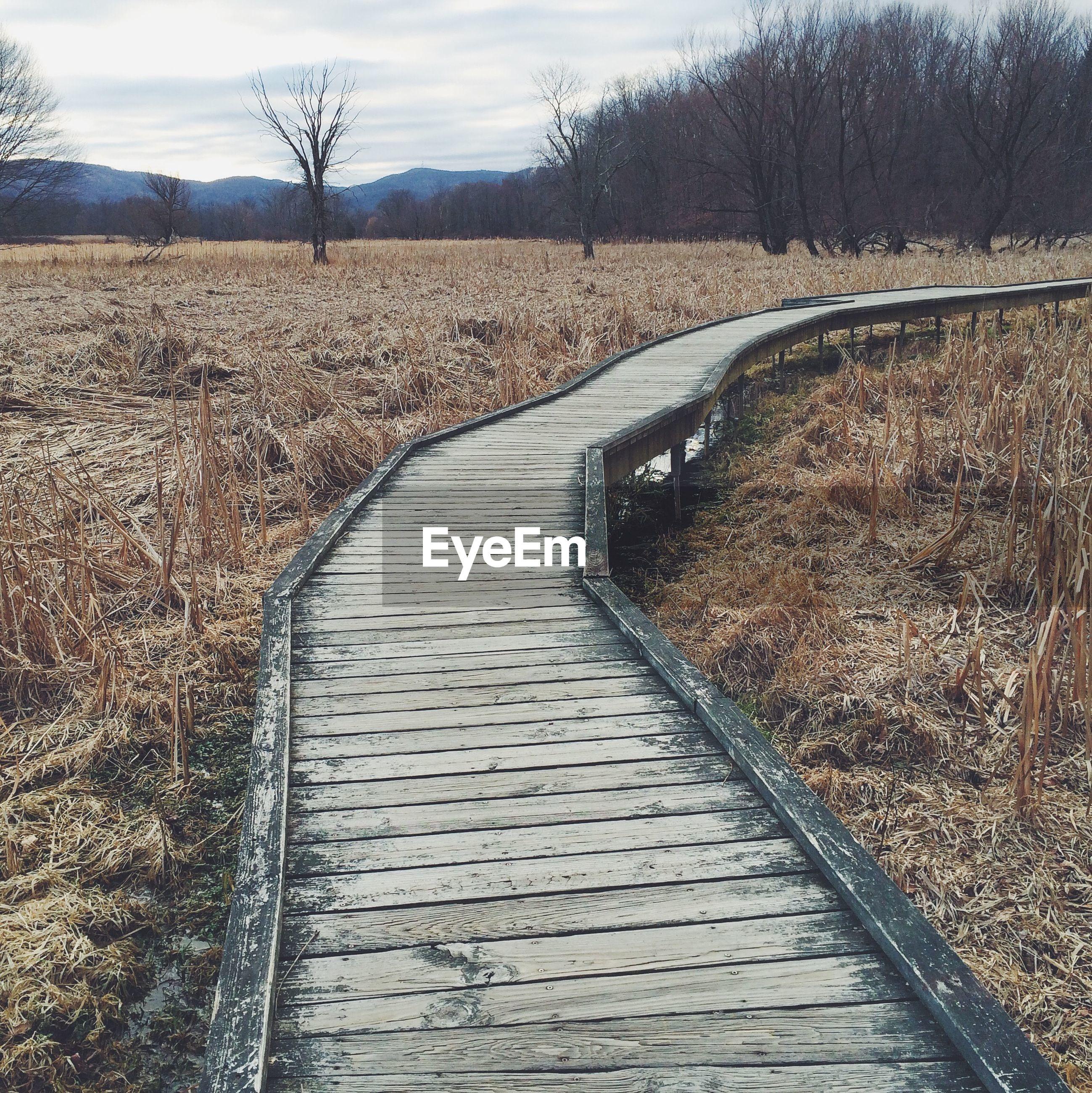 Empty boardwalk amidst field