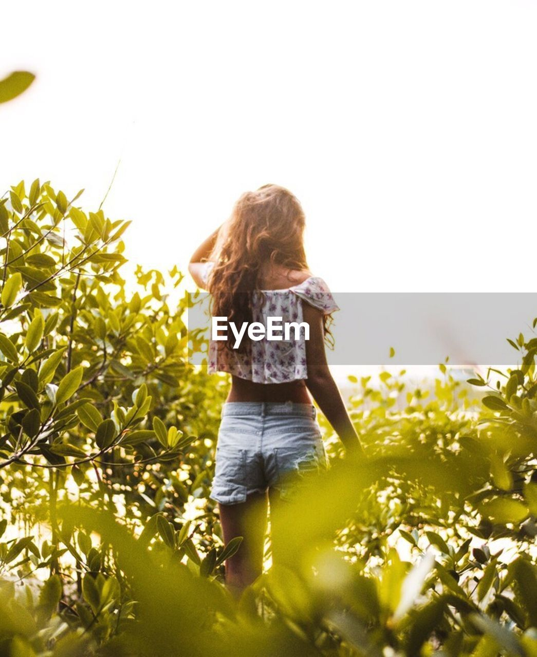 one person, rear view, long hair, nature, agriculture, growth, one girl only, people, sunlight, plant, summer, day, outdoors, children only, full length, rural scene, women, adult, child, tree, freshness, young adult, sky
