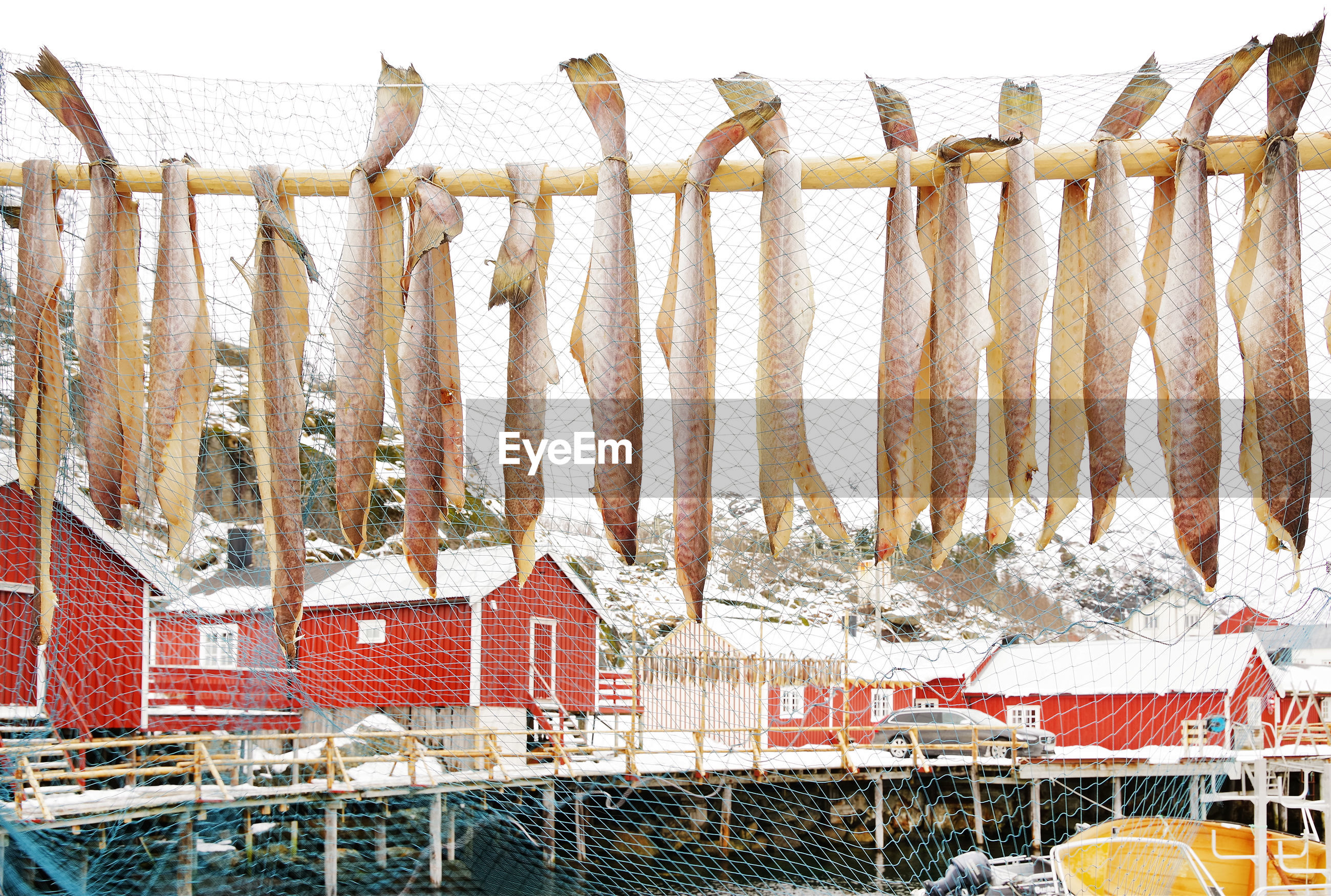 Fish drying on bamboo by fishing net