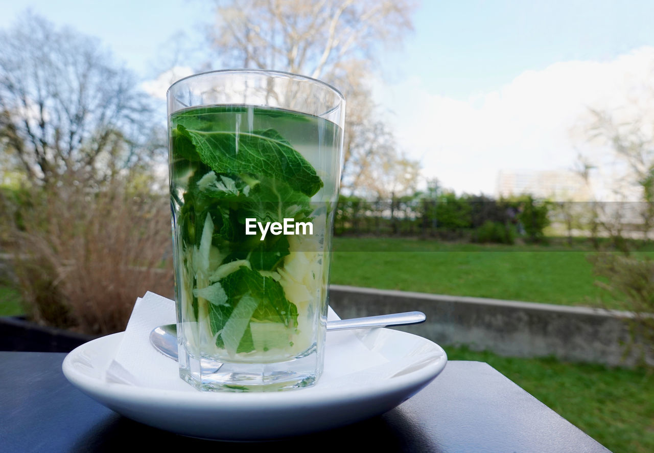 drink, refreshment, food and drink, table, household equipment, drinking glass, nature, day, focus on foreground, glass, plant, leaf, close-up, herb, transparent, no people, green color, glass - material, freshness, food, outdoors, mint leaf - culinary, crockery