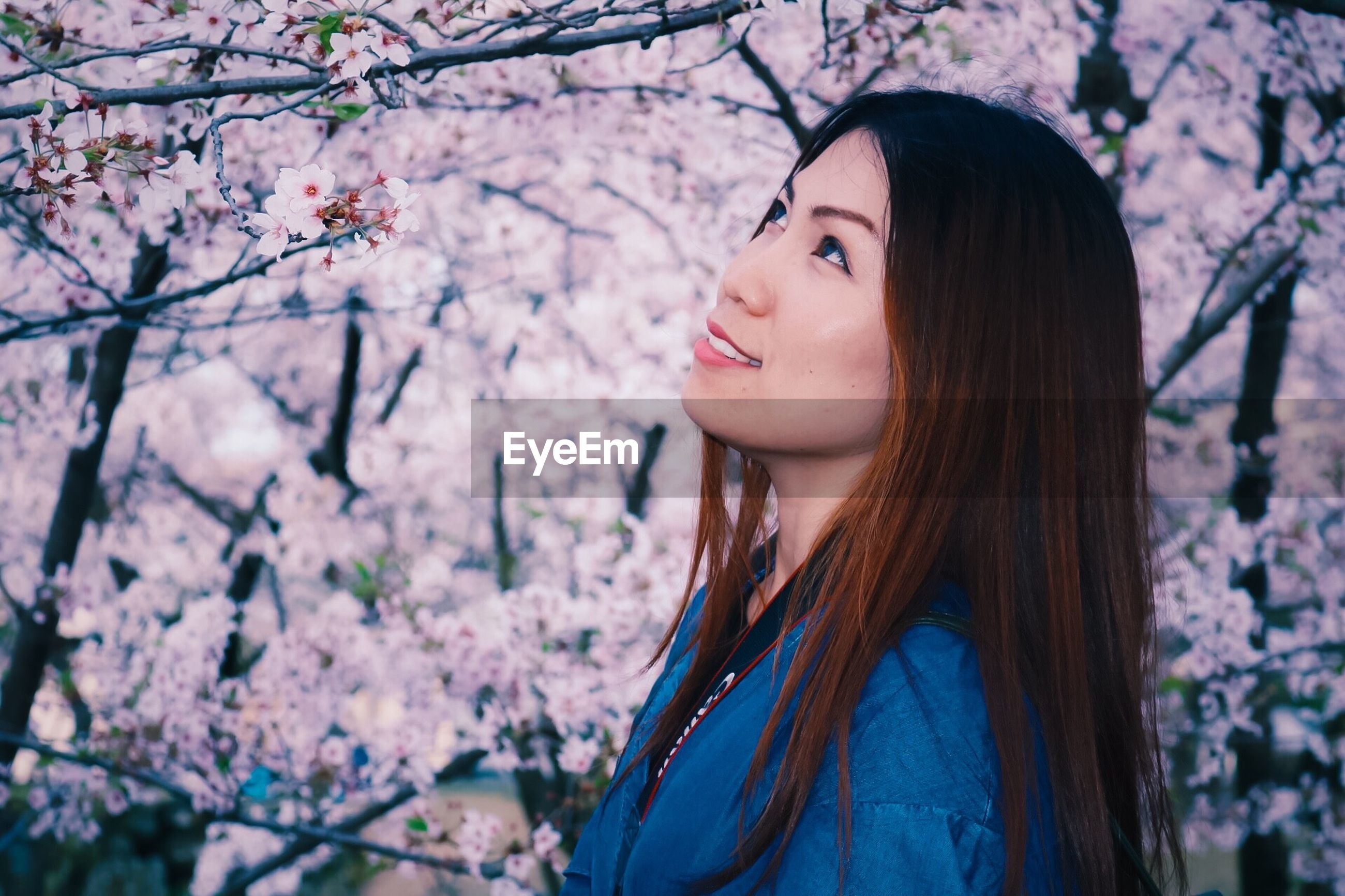 Side view of beautiful woman standing against cherry blossom tree