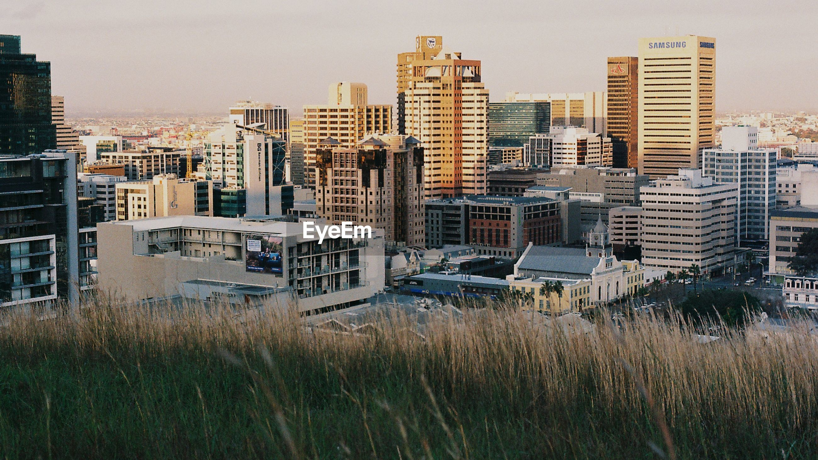 Buildings in front of grassy field in city
