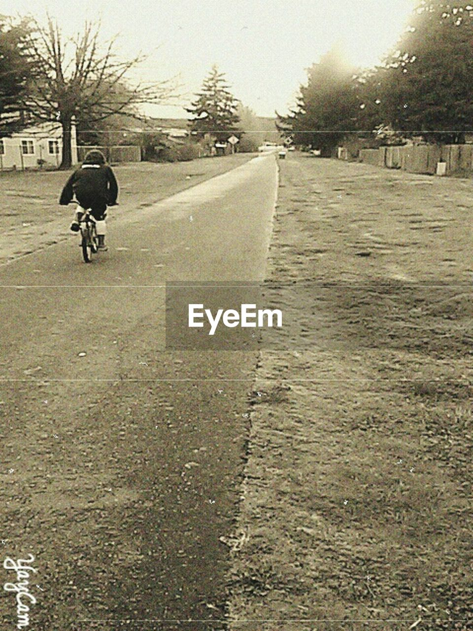 riding, real people, rear view, one person, transportation, bicycle, tree, men, leisure activity, cycling, lifestyles, day, outdoors, motorcycle, full length, road, biker, sports race, motocross, nature, sky, people
