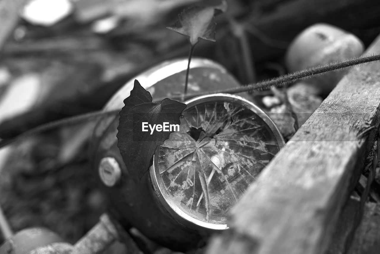selective focus, close-up, no people, leaf, metal, plant part, day, nature, old, shape, transportation, outdoors, still life, circle, wheel, geometric shape, mode of transportation, the past, wood - material, history, steel