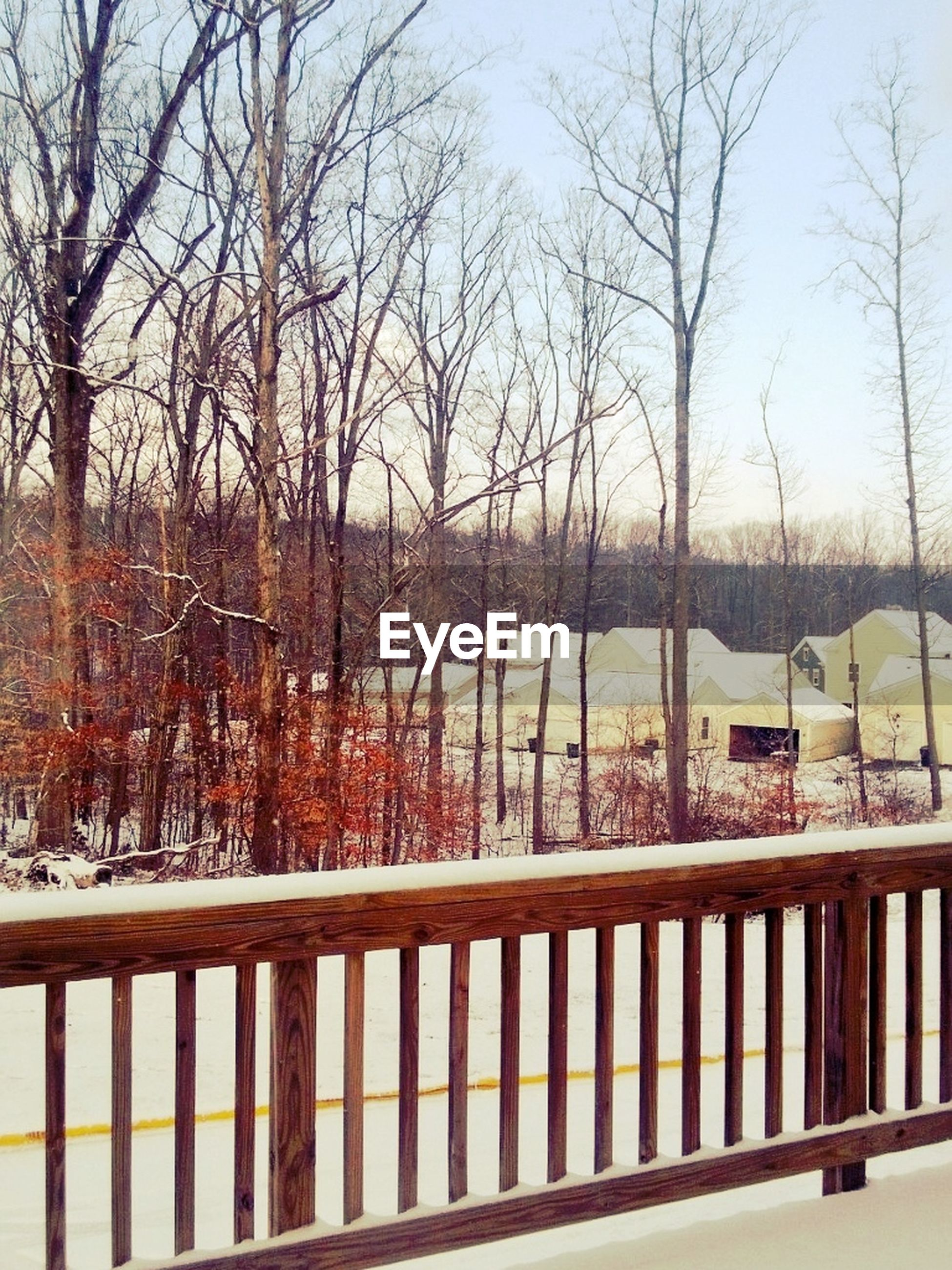 railing, bare tree, tree, water, tranquil scene, tranquility, nature, river, scenics, beauty in nature, lake, fence, branch, sky, mountain, winter, snow, outdoors, footbridge, day