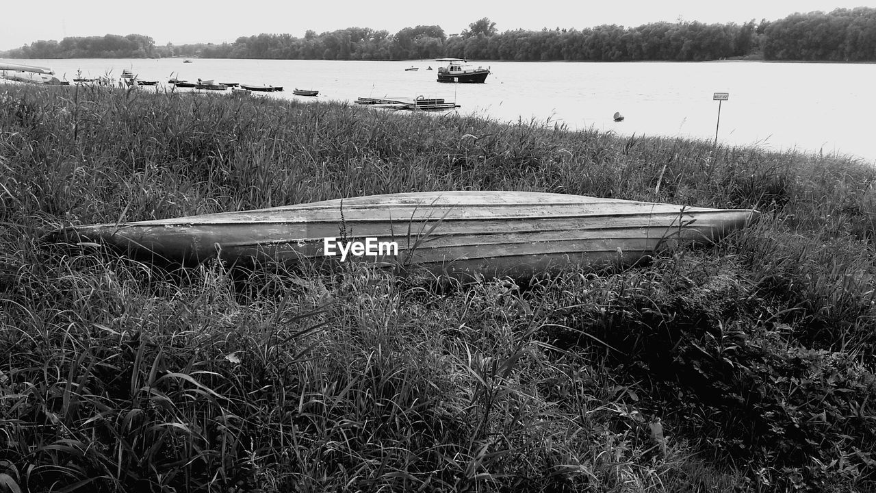 nautical vessel, boat, transportation, mode of transport, water, grass, day, tranquility, moored, nature, outdoors, tranquil scene, no people, rowboat, scenics, lake, plant, beauty in nature, growth, tree, sky