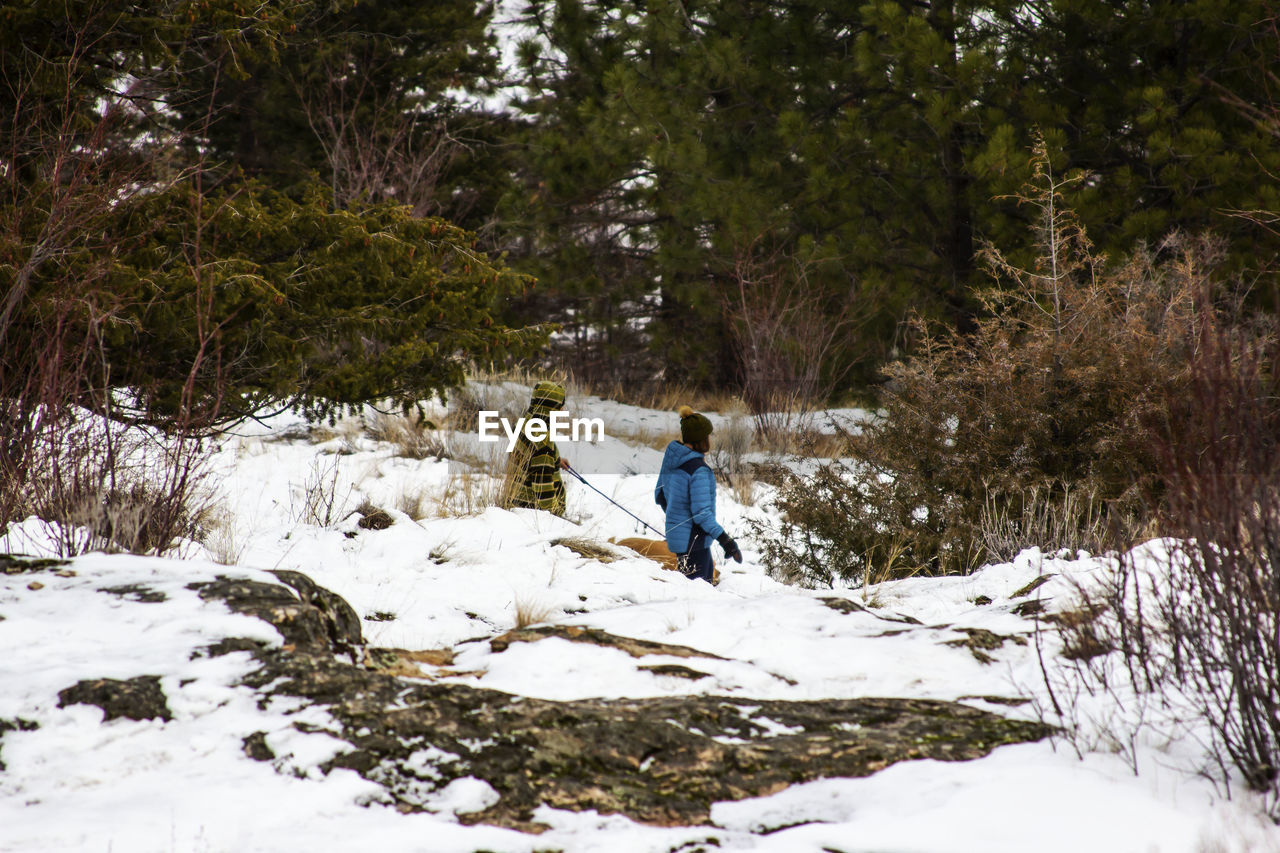 snow, winter, cold temperature, tree, plant, full length, leisure activity, one person, land, nature, real people, day, rear view, lifestyles, adventure, beauty in nature, warm clothing, walking, outdoors