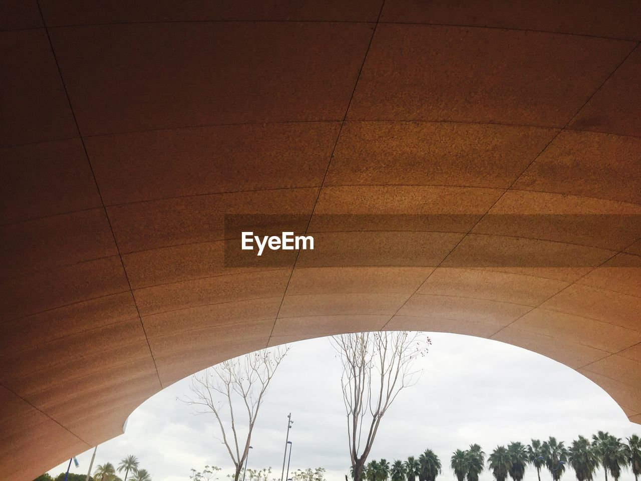 connection, arch, architecture, built structure, low angle view, tree, indoors, day, sky, no people, nature