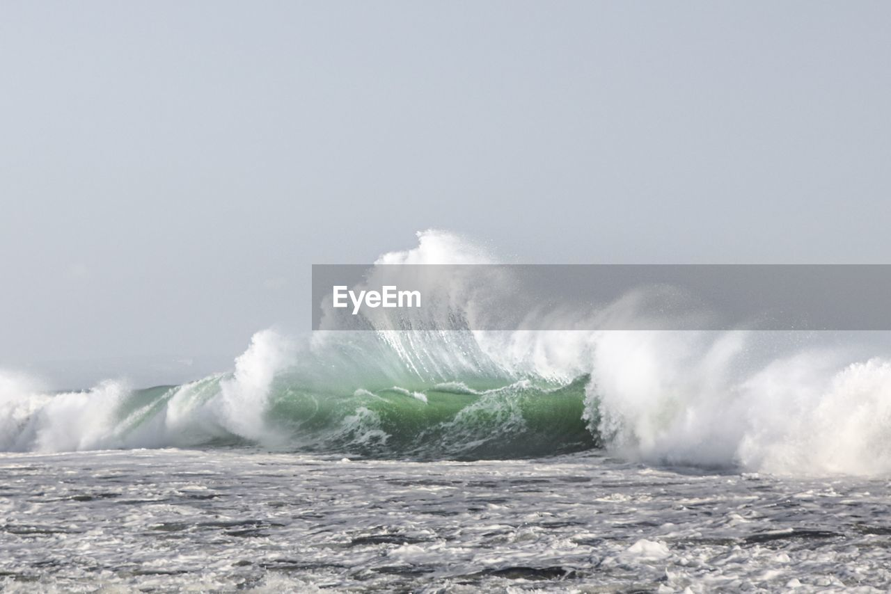 sea, water, wave, power, power in nature, motion, sky, beauty in nature, scenics - nature, nature, aquatic sport, surfing, sport, splashing, day, copy space, clear sky, waterfront, outdoors, breaking, horizon over water, wind, hitting