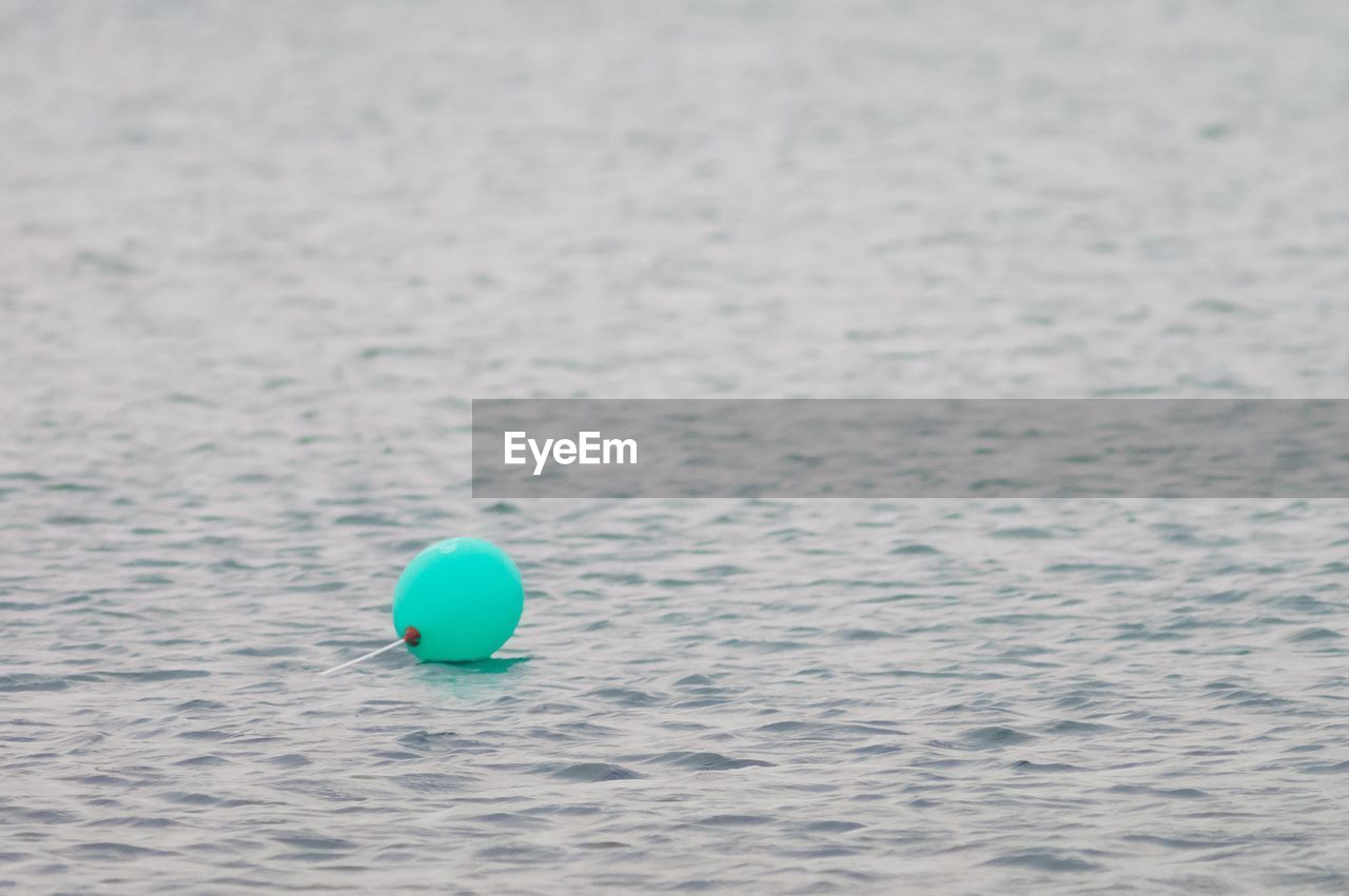 Close-up of balloon floating on sea